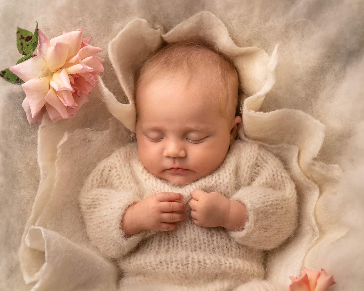 baby portrait newborn