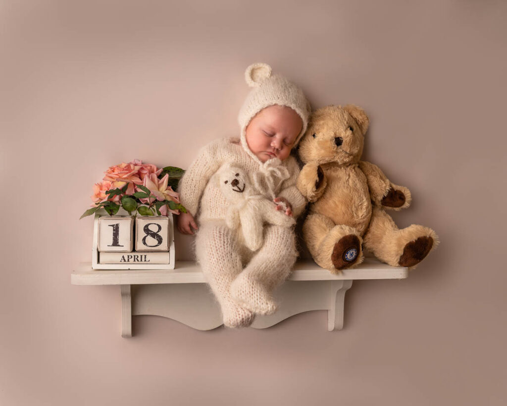 bear on the shelf